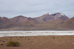 Salt Lake on the Altiplano Royalty Free Stock Images
