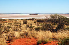 Salt Lake Amadeus and spinifex Stock Photography