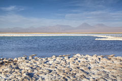 Salt lake in the Atacama desert Royalty Free Stock Image