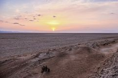 Salt lake Chott el Djerid in desert in Tunisia Stock Images