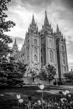 Salt Lake City tempel arkivfoto