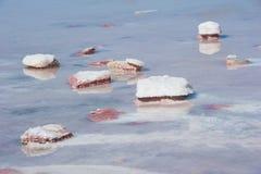 Salt lake crust detail Royalty Free Stock Images