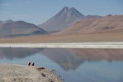 Salt Lake in the desert , Chile Royalty Free Stock Image