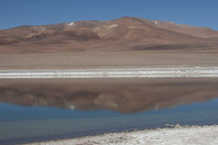Salt Lake in the desert , Chile Royalty Free Stock Images
