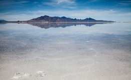 Salt Lake en Utah, Etats-Unis images stock