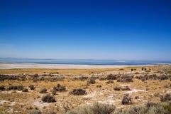 Salt Lake, il cielo blu e la luna fotografia stock
