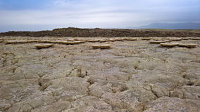 Salt Lake Karum aka Assale eller Asale, Danakil avlägsna Etiopien Arkivbild