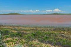 Salt Lake Koyashskoe Elkenskoe. Opuksky Reserve Stock Images