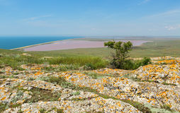 Salt Lake Koyashskoe Elkenskoe. Opuksky Reserve Stock Photography