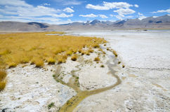 Salt lake in Ladakh Royalty Free Stock Images
