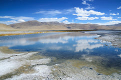 Salt lake in Ladakh Royalty Free Stock Image