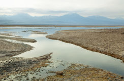 Salt lake lagoon Chaxa Stock Photos