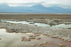 Salt lake lagoon Chaxa Stock Photo