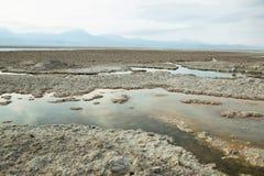 Salt lake lagoon Chaxa Stock Photography