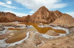 Salt lake lagoon Chaxa Royalty Free Stock Photo