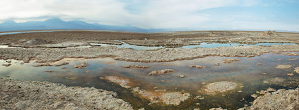 Salt lake lagoon Chaxa Royalty Free Stock Photos