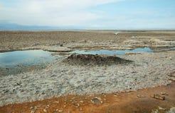 Salt lake lagoon Chaxa Royalty Free Stock Images