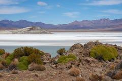 Salt Lake na Altiplano Obraz Royalty Free
