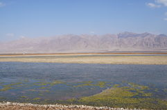 Salt lake near Eilat Royalty Free Stock Photos