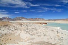 Salt Lake nel deserto di Atacama, Cile fotografia stock libera da diritti