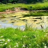 Salt lake in Ocna Sibiului, near Sibiu Hermanstadt. Ocna Sibiului, German: Salzburg, is a town in the centre of Sibiu County, in southern Transylvania, central Stock Image