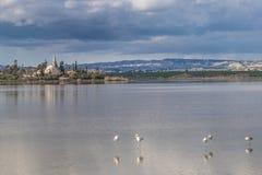 Salt Lake perto de Larnaca, Chipre - lugar do wintering para flamingos, a reserva natural e a atração turística cor-de-rosa fotos de stock royalty free