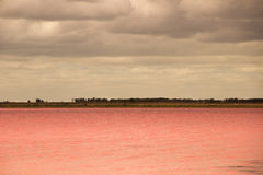 Salt Lake pink in the desert and cloudy sky Royalty Free Stock Image
