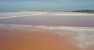 Salt Lake rosado