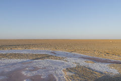 Salt lake in Sahara. Tunisia Royalty Free Stock Photo