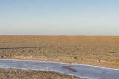 Salt lake in Sahara. Tunisia royalty free stock images