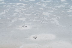 Salt lake Salar Uyuni, Bolivia Royalty Free Stock Photo