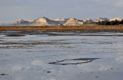 Salt lake in the Siwa oasis Stock Images