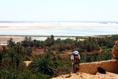 Salt Lake at Siwa Oasis. Egypt, view from Hercules Temple stock photo