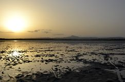 Salt lake during sunset Royalty Free Stock Images
