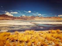 Salt lake Tso Kar in Himalayas. Ladakh, India Stock Images