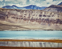 Salt lake Tso Kar in Himalayas. Ladakh, India Stock Image
