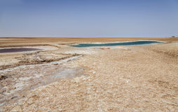 Salt lake in Tunisia Royalty Free Stock Photos