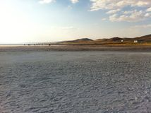 Salt lake in turkey Stock Image