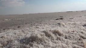 Salt lake of Turkey stock footage