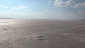 Salt lake of Turkey stock video