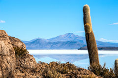 Salt lake Uyuni in Bolivia Royalty Free Stock Photography