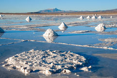 Salt lake Uyuni Desrt in Bolivia Stock Photography