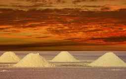 Salt Lakes Bolivia in the sunset Royalty Free Stock Photo