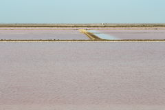 Salt lakes Mas des Crottes, Camargue in France Royalty Free Stock Photography