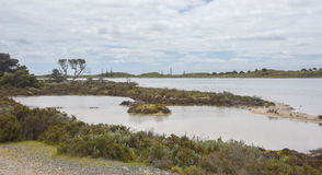 Salt Lakes at Rottnest Island. Salt lake with native grasses under a cloudy sky at Rottnest Island in Western Australia Royalty Free Stock Photography