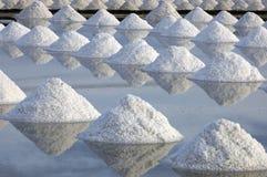 salt lantgård Arkivfoton