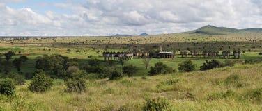 Salt lick lodge , Taita Hills , Kenya. Salt lick lodge for tourists at safari in Taita Hills wildlife sanctuary ( Kenya Royalty Free Stock Image
