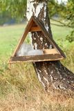 Salt lick. Shelter with salt lick as a help from hunters to animals Stock Photos