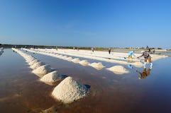 Salt stock image