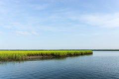 Salt marsh on Bulls Island. In the Cape Romaine National Wildlife Refuge, South Carolina stock photos